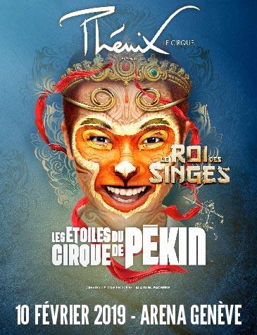 Le Cirque de Pékin : Le Roi des Singes